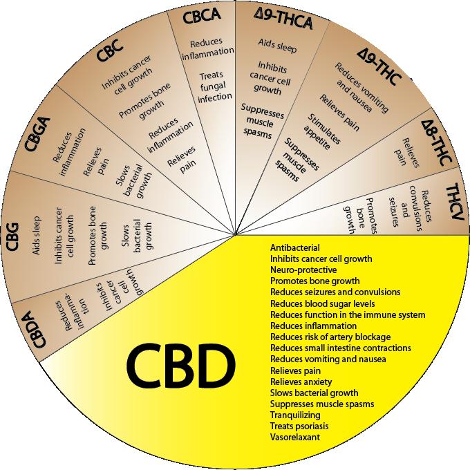 CBD-usomedico